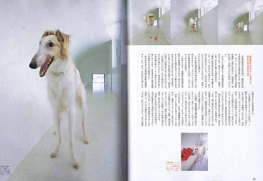 Dog World 2003/9の写真02