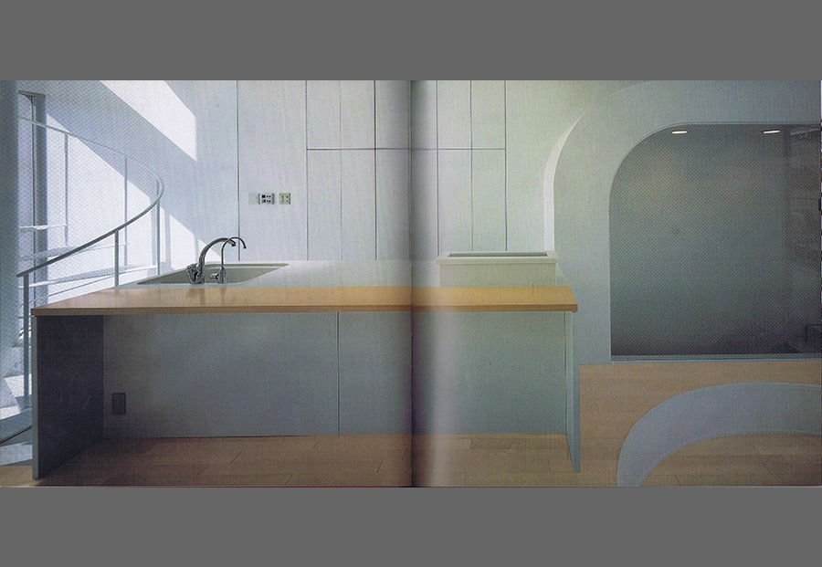 BIG DESIGNS FOR SMALL KITCHENSの写真02